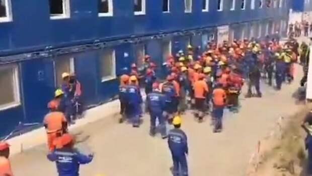 Трудовые мигранты бунтуют на территории России все чаще