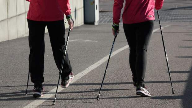 Тренер по бегу Шувакин перечислил полезные свойства ходьбы