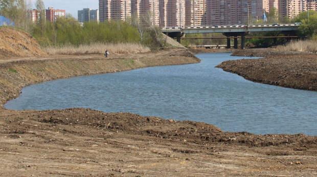 Почти 300километров береговой линии очистят отмусора вРостовской области