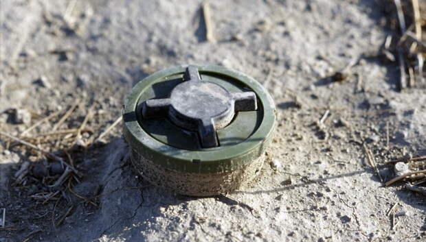 Боеприпасы времен ВОВ обнаружили в трех муниципалитетах Подмосковья