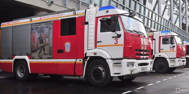На Международном шоссе пожарные потушили мусор