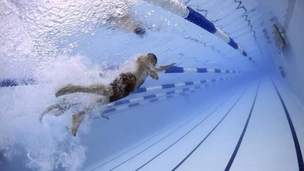 Россиянин Бондарь взял золото на чемпионате Европы по водным видам спорта