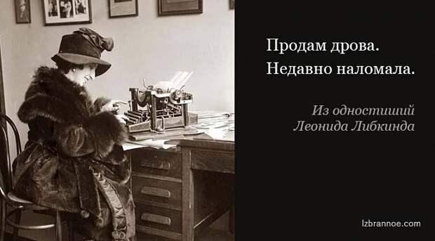 Еще 30 одностиший Леонида Либкинда