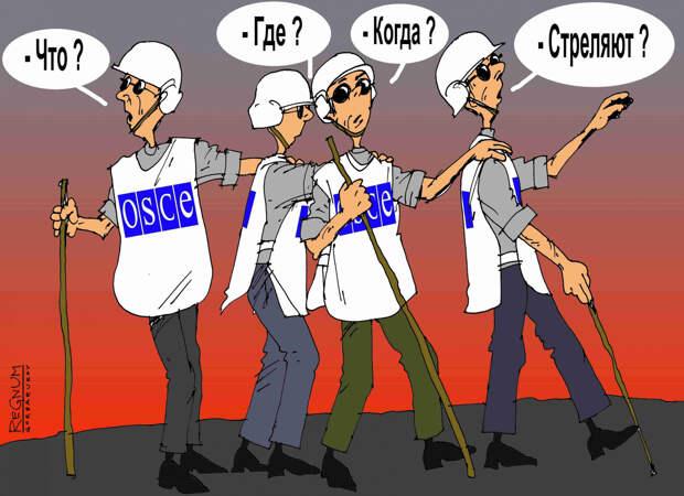 Донбасс возмущён: «Беспристрастная» ОБСЕ поддержала бандеровскую Украину