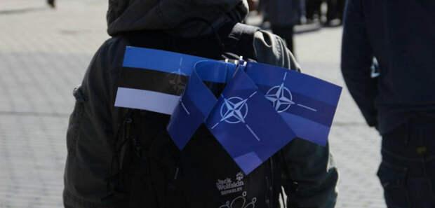 НАТО Эстония