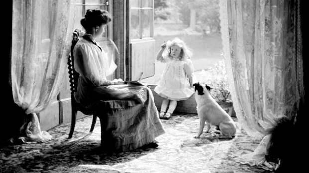 """С первыми промышленными кормами для собак в жизнь вошла идея """"привередливого домашнего любимца"""""""