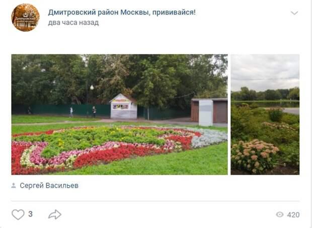 Фото дня: красочные клумбы в парке «Ангарские пруды»