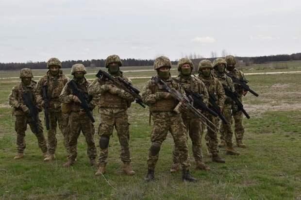 Украинские диверсанты уничтожили пятерых военных ЛНР из оружия стандарта НАТО