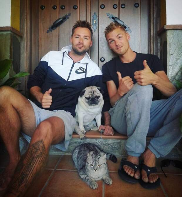 Кот и мопс продолжают путешествовать в своей знаменитой тележке инстаграмм, кот, кошка, путешественники, собака