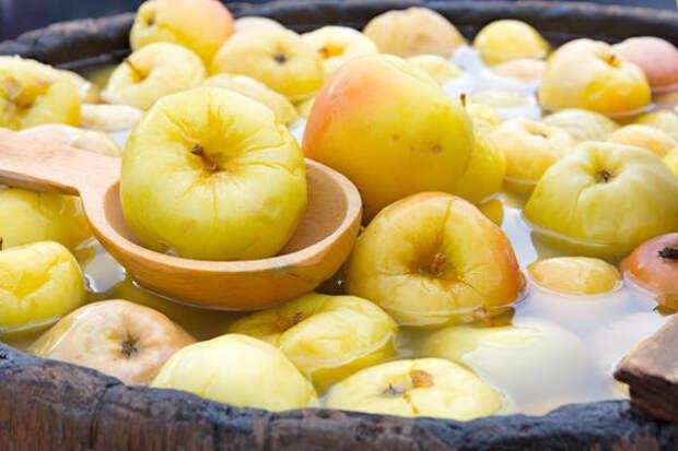 Моченые яблоки в сусле