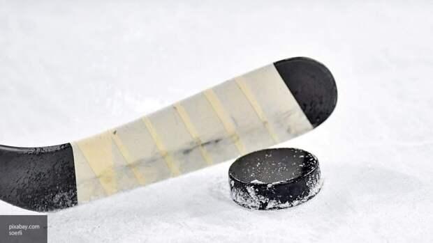 Академию хоккейного мастерства откроют в Купчино до конца года