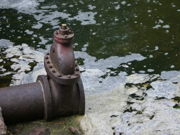 Петербуржцы пожаловались на масляную пленку в канале Грибоедова
