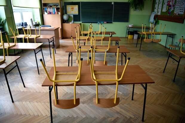 Глава Минпросвещения рекомендовал школам и детсадам не работать 4—7 мая