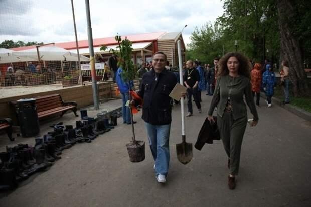 В Крыму посадили 350 новых деревьев