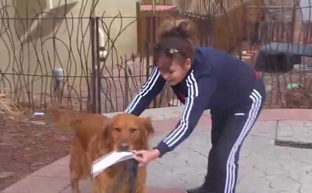 Пожилая женщина самоизолировалась и теперь за продуктами ей ходит собака