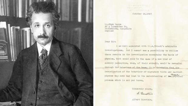 Ученые сообщили о предсказаниях Эйнштейна