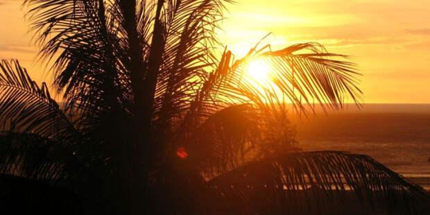 Кипр разрешил въезд в страну привитым от коронавируса туристам