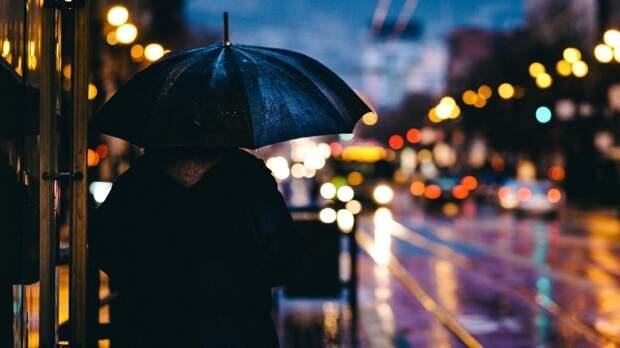 Дождливая и теплая погода ожидает некоторые районы России