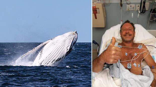 Мужчина повторил судьбу пророка Ионы и успешно выбрался из пасти кита