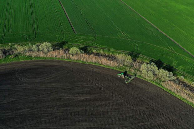 Минсельхоз начал отбирать территории для ввода в оборот сельхозземель