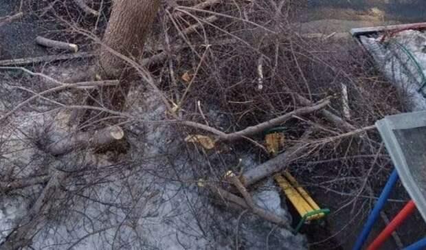 На ул. Самолетной Оренбурга коммунальщики срубили клён и повредили скамейку