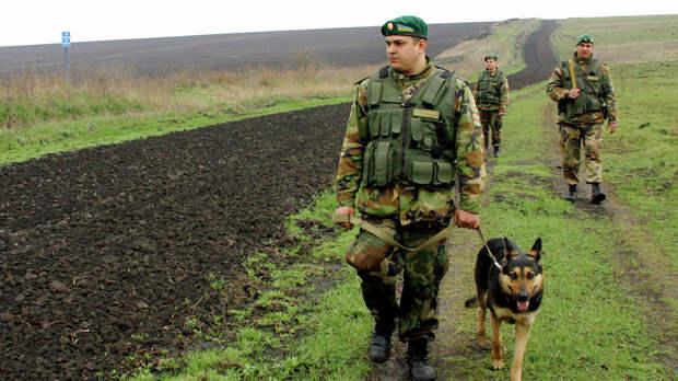 Погранслужба Украины: двух пограничников избили на границе с Россией