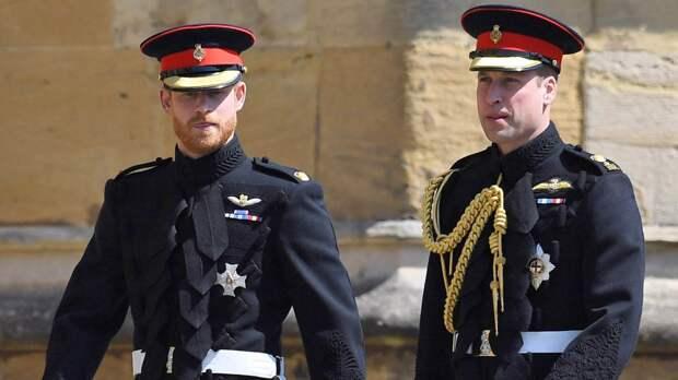 Королевский эксперт Роберт Джобсон заявил о возобновлении общения принцев Гарри и Уильяма