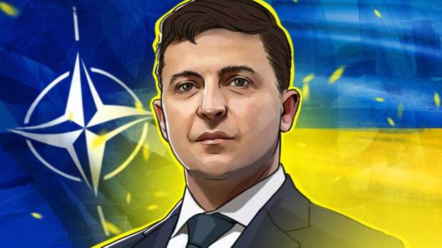 Декан Гарварда Тимоти Колтон считает невозможным вступление Украины в НАТО