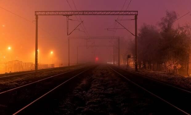 В Подмосковье под колесами товарного поезда погибла супружеская пара
