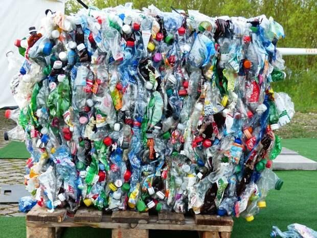 Экоцентр «Московский эколог» проведет лекцию о видах пластика