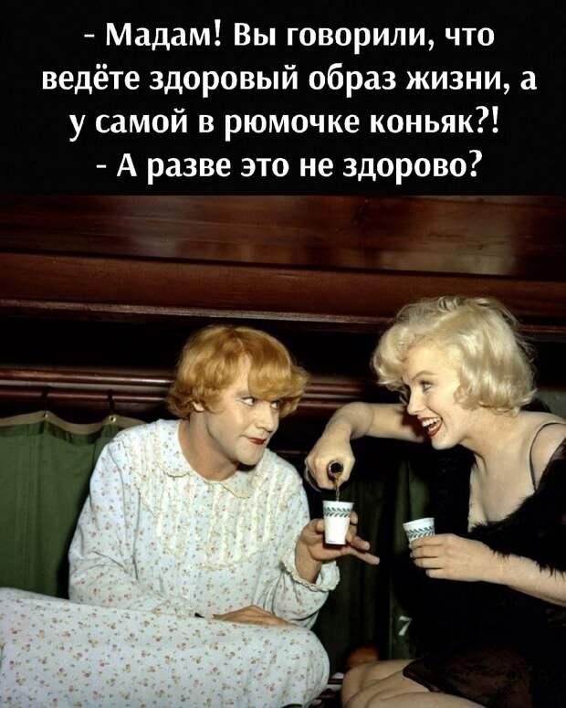 - Дорогая, ты, как всегда, совершенно права…