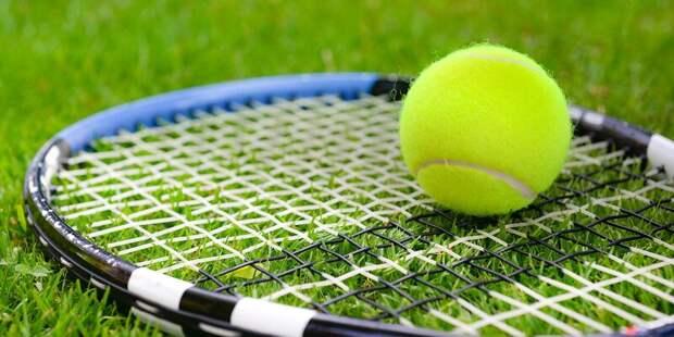 В пойме реки Чермянки появится четыре теннисных корта