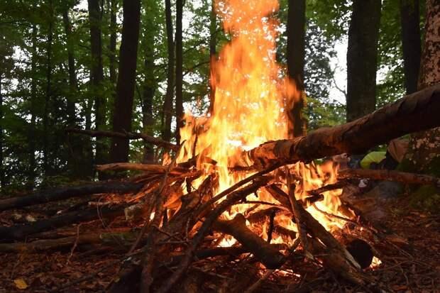 Опасность лесных пожаров в Удмуртии, проверки аттракционов на Алтае и захват солдатами НАТО завода в Болгарии: что произошло минувшей ночью