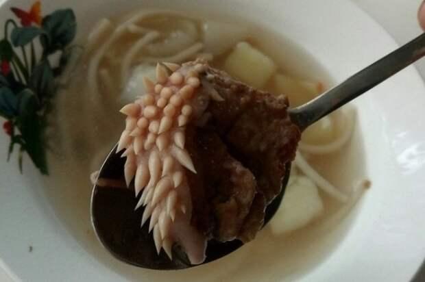 В школьном супе нашли странный кусок мяса с белыми отростками
