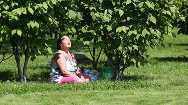 Профессор МГУ объяснил, как знойная жара повлияет на ситуацию с COVID-19 в Москве