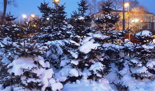 Февраль стал самым холодным месяцем вСвердловской области за36 лет
