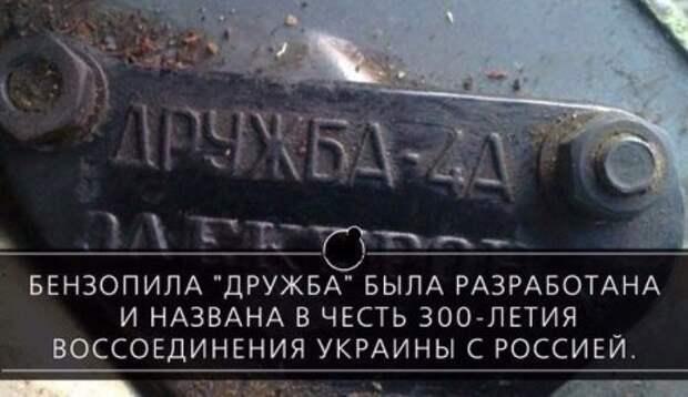 1449780662_1449749431_raznoobraznaya_2-69