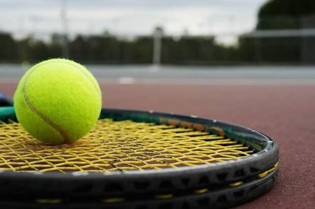У российской теннисистки Елены Весниной украли олимпийские медали