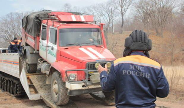 Тюменцев просят незамедлительно сообщать оподжоге в лесу или на поле