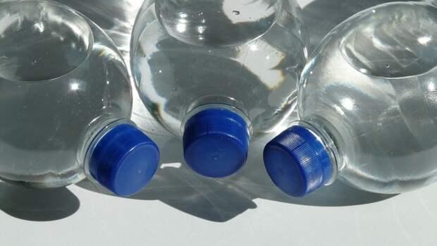 Эколог Замарин одобрил идею Онищенко об отказе от пластика