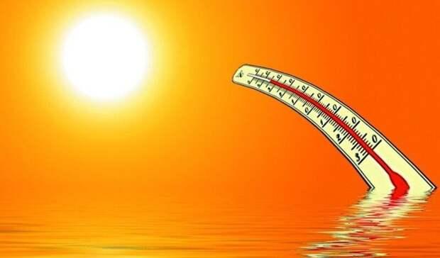 ВБелгородскую область придёт жара до+31 ˚С