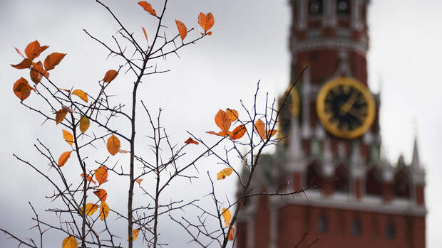 Небольшой дождь и до 13 градусов тепла ожидаются в Москве в субботу