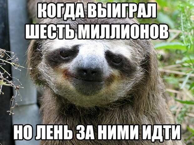 _DyjVMEWAeQ