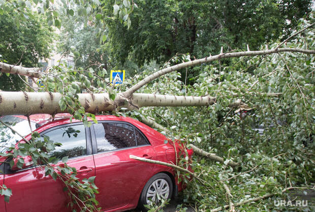 Синоптик рассказал, каким еще регионам России угрожают ураганы