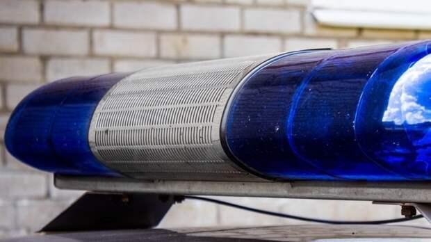 Пропавшего во время прогулки 4-летнего мальчика нашли в Кургане