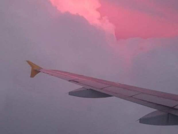 Российский пилот: Увидев истребитель, экипажу рейса Ryanair следовало сообщить о нападении на воздушное судно