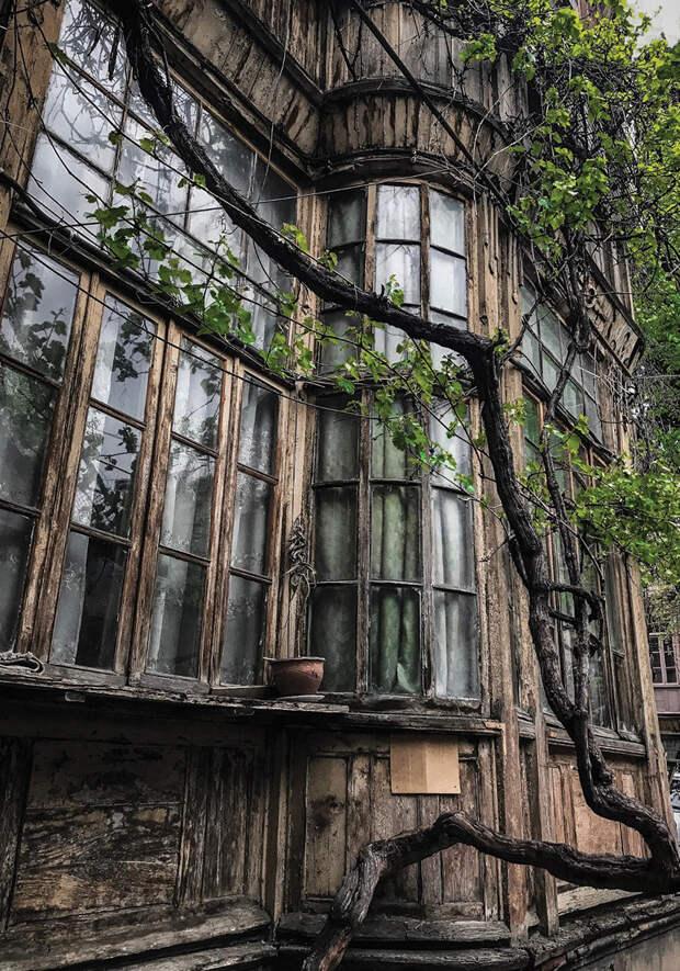 Нищегид по Тбилиси: как бесплатно напиться, найти лучшие клубы и дешево оформить международные водительские права в Грузии