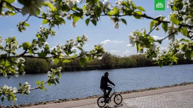 Жителей Москвы и Подмосковья ждет резкое потепление