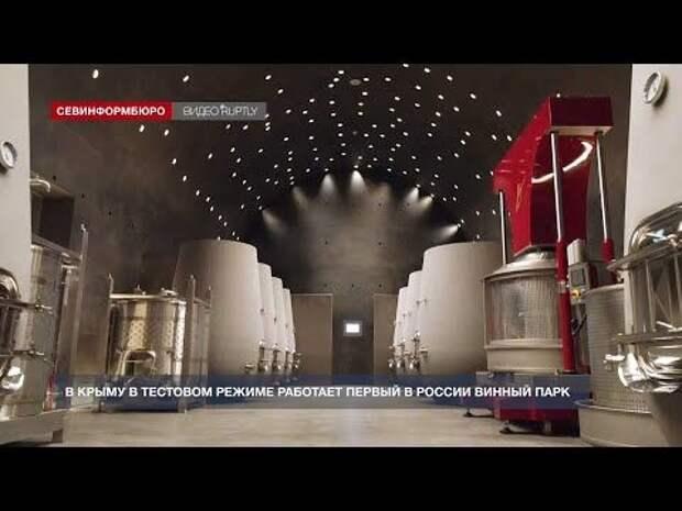 Как в Крыму в тестовом режиме работает первый в России винный парк