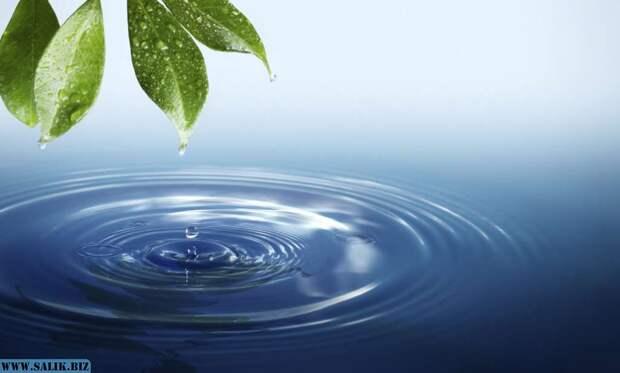 Откуда берется живая и мертвая вода?